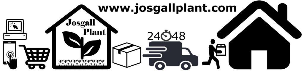 Proceso Josgall Plant